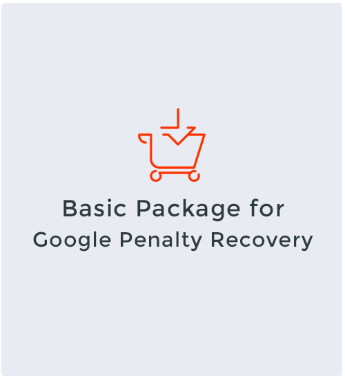 Basic Package for Google Penalty Recovery