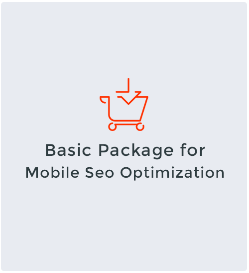 Basic Package for Mobile Seo Optimization