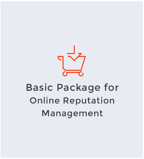 Basic Package for Online Reputation Management