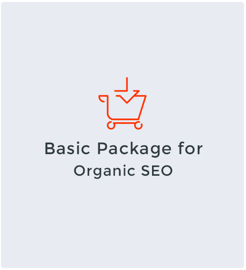 Basic Package for Organic SEO
