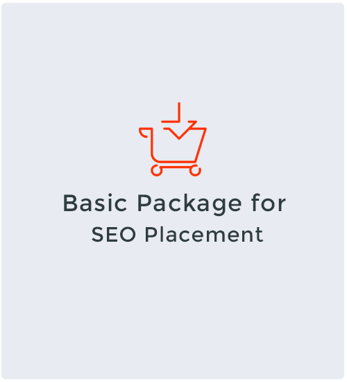 Basic Package for SEO Placement