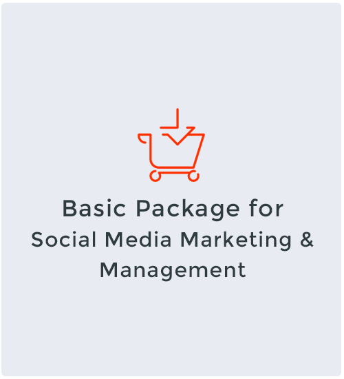 Basic Package for Social Media Marketing & Management