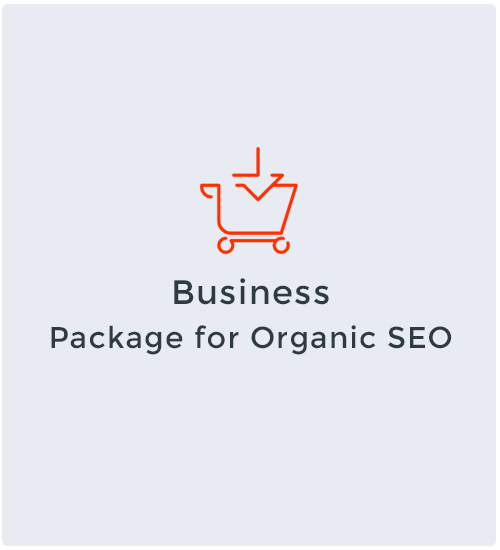 Business Package for Organic SEO