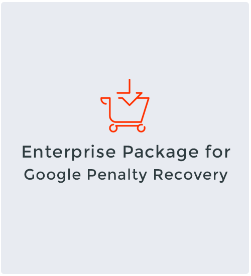 Enterprise Package for Google Penalty Recovery