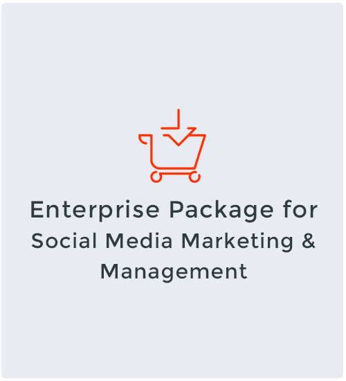 Enterprise Package for Social Media Marketing & Management