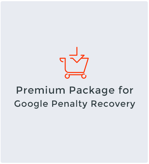 Premium Package for Google Penalty Recovery
