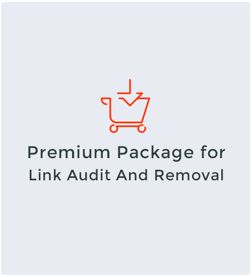 Premium Package for Link Audit And Removal