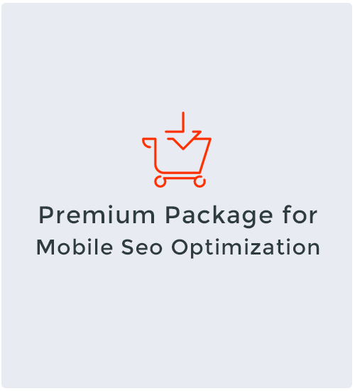 Premium Package for Mobile Seo Optimization